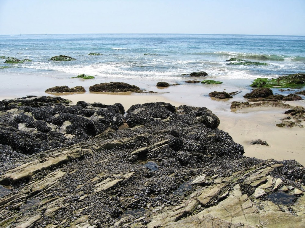 crystal_cove
