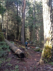 griswold_trail_01