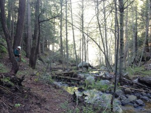 griswold_trail_02