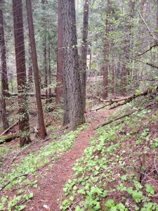 griswold_trail_10